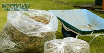 springfield-il lawn service cleanup