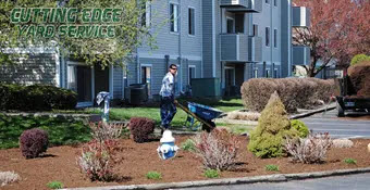 il-lawn care and maintenance