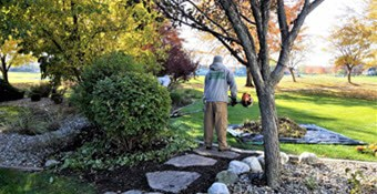 backyard landscaping springfield il